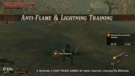Anti-Flame & Lightning Training Banner