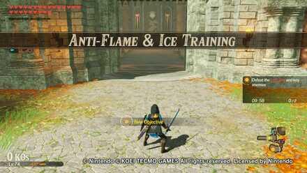 Anti-Flame & Ice Training Banner
