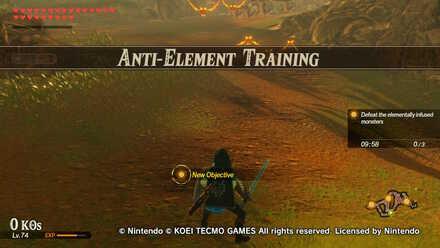 Anti-Element Training Banner