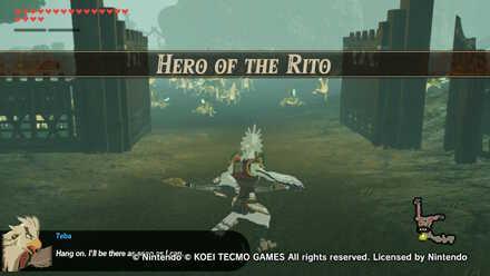 Hero of the Rito Banner