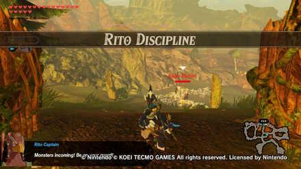 Rito Discipline Banner