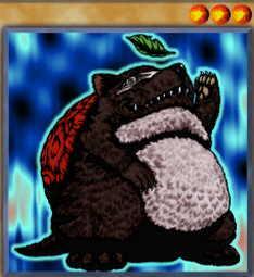 Turtle Raccoon
