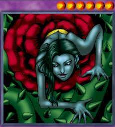 Rose Spectre of Dunn