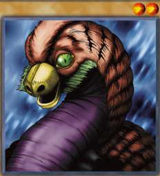 Dig Beak