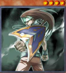 Mid Shield Gardna