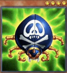 Skull-Mark Ladybug