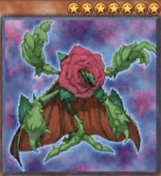 Regenerating Rose
