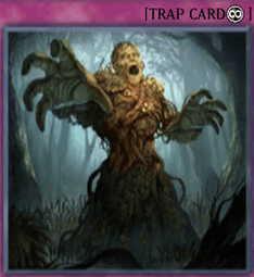 Swamp Mirrorer