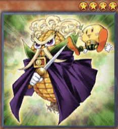 Papa-Corn