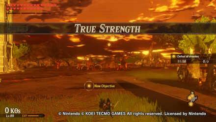 True Strength Banner