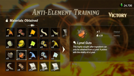 Hyrule Warriors: Age of Calamity - Anti-Element Training