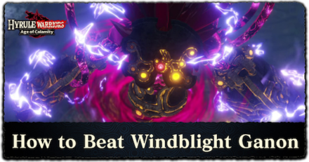 How to Beat Windblight Ganon.png