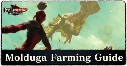 Hyrule Warriors: Age of Calamity - Molduga Farming Guide