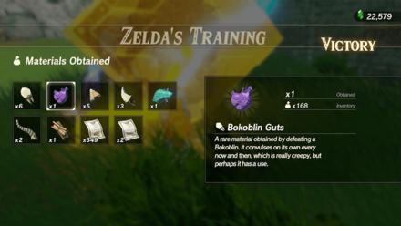 Hyrule Warriors: Age of Calamity - Zelda