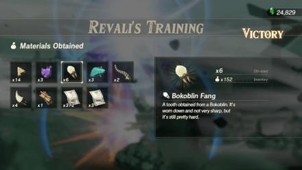 Hyrule Warriors: Age of Calamity - Revali