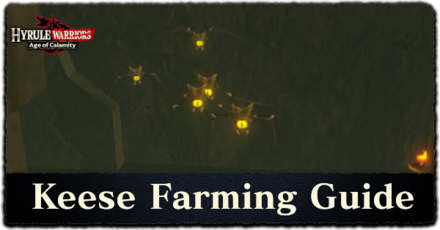 Hyrule Warriors: Age of Calamity - Keese Farming Guide