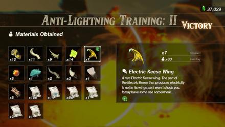 Hyrule Warriors: Age of Calamity - Anti-Lightning Training II
