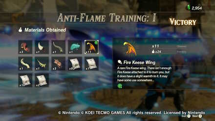 Fire Keese Anti-Flame Training I Rewards