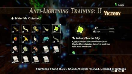 Electric Chuchu Anti-Lightning Training II Rewards.jpg