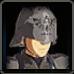 Hylian Captain Icon