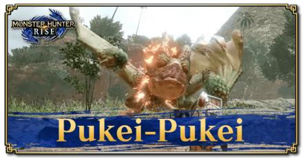 Pukei-Pukei Basic Information.png