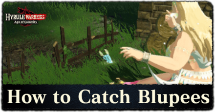 How to Catch Blupees.png
