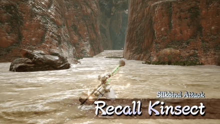recall kinsect.png