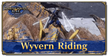 Wyvern Riding Banner