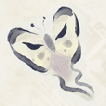 Clothfly.png