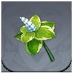 Mint Image