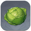 Cabbage Image