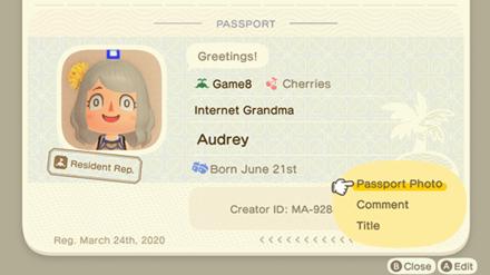 ACNH - Passport Editable Features