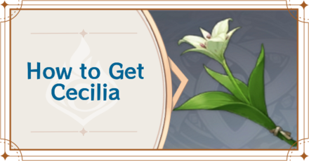 Genshin Impact - How to Get Cecilia.png