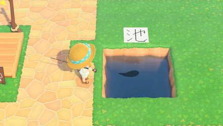 ACNH - Minimum Water Area for Fish Spawn 3x3.jpeg
