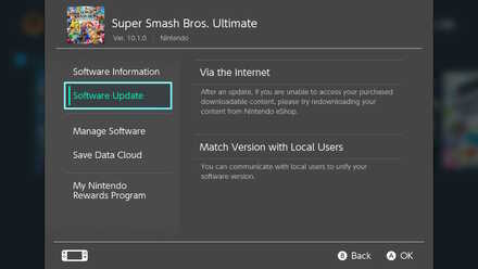 Select Software Update Option