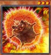 Neo Flamvell Hedgehog