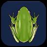 Genshin - Frog Image