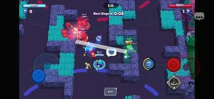 Walls and Bushes - Bot Riot.jpg