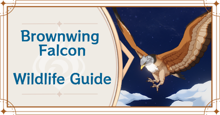 Genshin Impact - Where to Find Brownwing Falcon and Basic Information