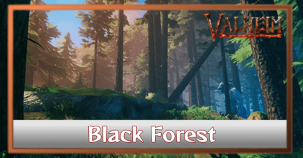 What are Black Forest Biomes