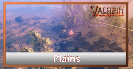What are Plains Biomes