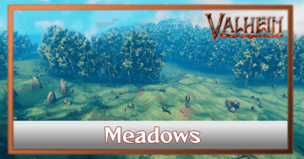 What are Meadows Biomes