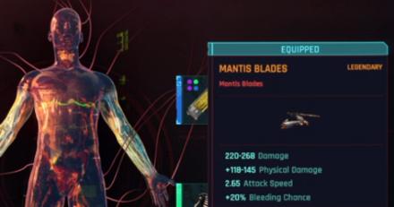 Cyberpunk 2077 Mantis Blades Build 02.png