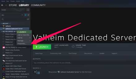Properties Valheim Dedicated Server.jpg