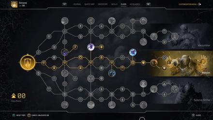 Outriders Warden Build - Skill Tree.jpg