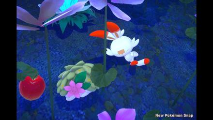 New Pokemon Snap - Shaymin Location