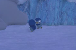 Piplup 2 Star Photo