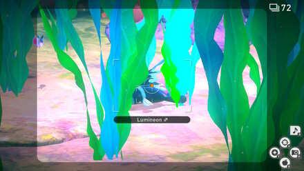 Lental Seafloor crystabloom.jpg
