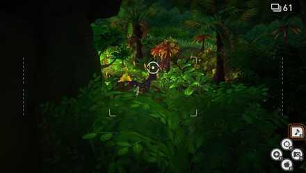 New Pokemon Snap Waterfall Jungle Night.jpg