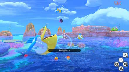 New Pokemon Snap Pyukumuku Returning to the Sea.jpeg